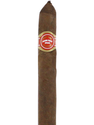 AF Curly Head Deluxe Maduro